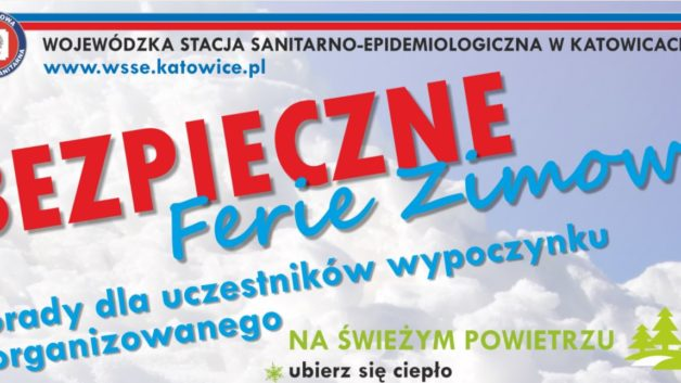 http://zoz.wodzislaw.pl/wp-content/uploads/2018/01/ferie3-628x353.jpg