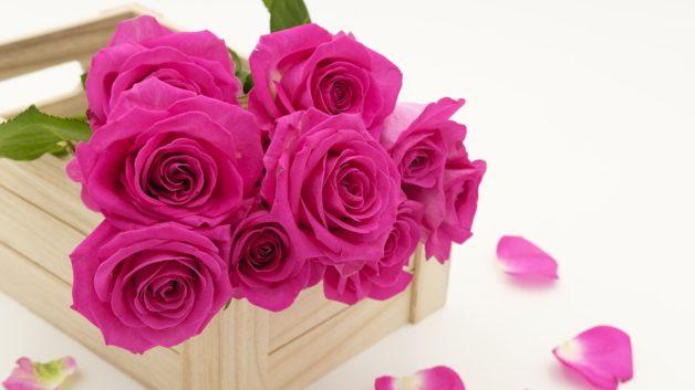 http://zoz.wodzislaw.pl/wp-content/uploads/2018/05/bouquet-3158355_960_720-628x353.jpg