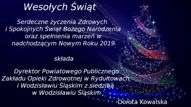 http://zoz.wodzislaw.pl/wp-content/uploads/2018/12/xmas-podstawowe-628x353.png