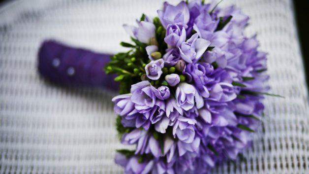 http://zoz.wodzislaw.pl/wp-content/uploads/2019/03/kwiaty-628x353.jpg