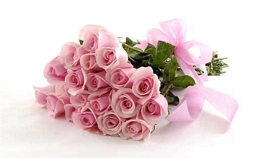 http://zoz.wodzislaw.pl/wp-content/uploads/2019/10/kwiaty.jpg